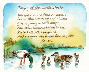 PrayerOfDucks