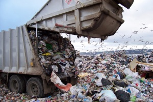 garbage-landfill