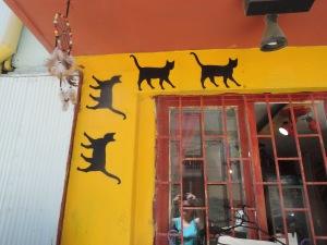 Chile Valparaiso 050