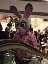 bunny escalator