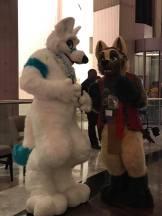 chatting furries