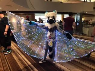 light furry