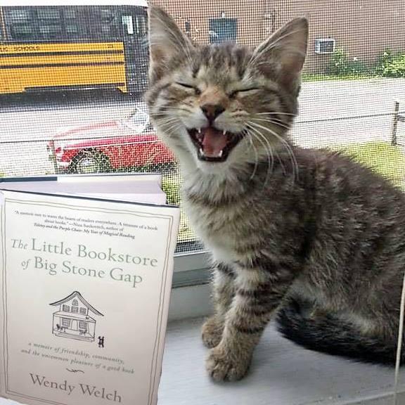 happy bookstore cat